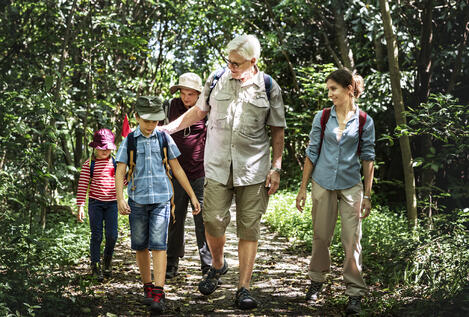 family-hiking-in-a-forest-DSMGRU3